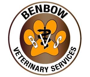 BenbowCircleBronze